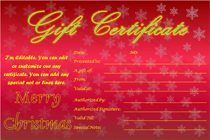 starry night christmas gift certificate template